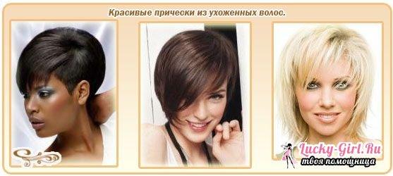 Как определить сухие или жирные волосы предназначенных для сухих волос