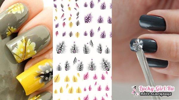Как клеить наклейки на ногти: описание процесса и рекомендации