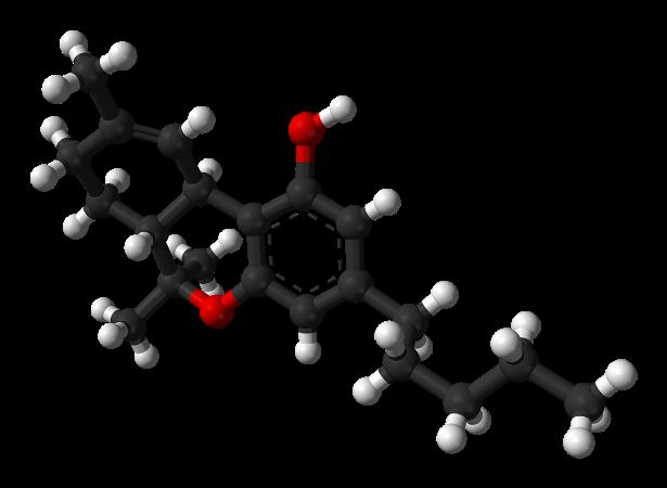 Как вывести токсины из организма? Как вывести канабинол из организма: способы