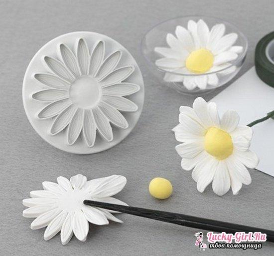 Цветы из мастики своими руками: пошаговый мастер-класс