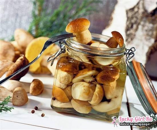 Маринованные белые грибы на зиму: рецепты