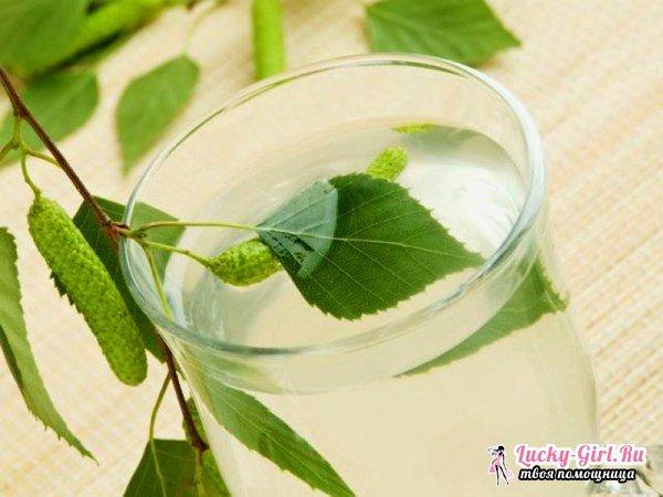 Консервирование березового сока: способы. Лечение березовым соком