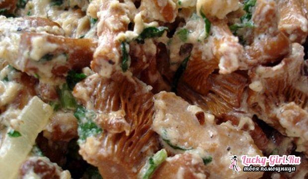 Как жарить сыроежки: беспроигрышные рецепты и время приготовления
