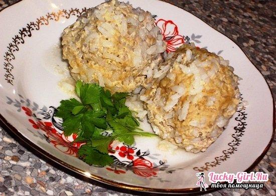 Ежики из фарша с рисом в мультиварке: рецепты с фото