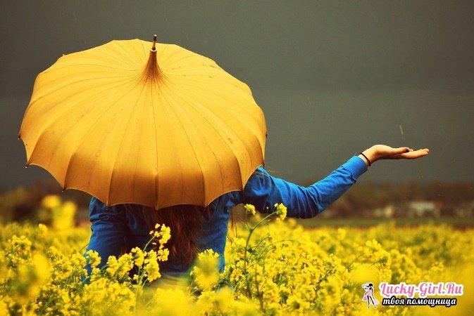 Что означает желтый цвет? Значение желтого цвета в символике, психологии и языке цветов