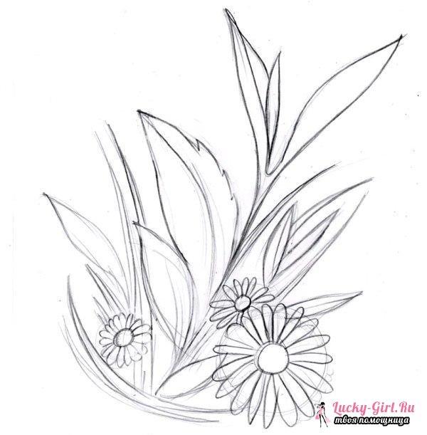 Рисуем цветы карандашом поэтапно. Выбор рисунка, техника работы и советы для начинающих