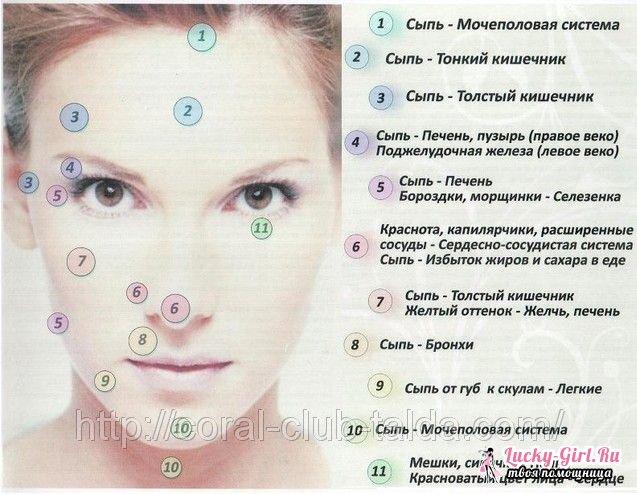 problemy-s-kozhej-lica-iz-za-kishechnika_3.jpg