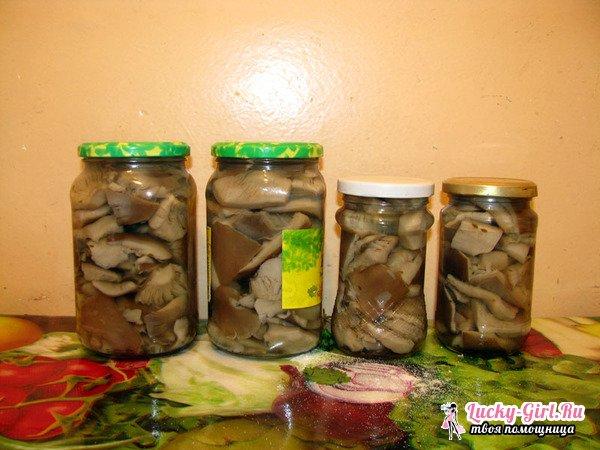 Как солить грибы свинушки? Как чистить грибы свинушки?