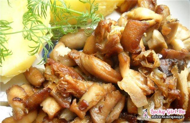 Как приготовить сыроежки? Рецепты соленых, жареных и отварных сыроежек