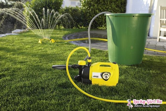 Системы полива огорода. Виды, особенности использования и способы изготовления