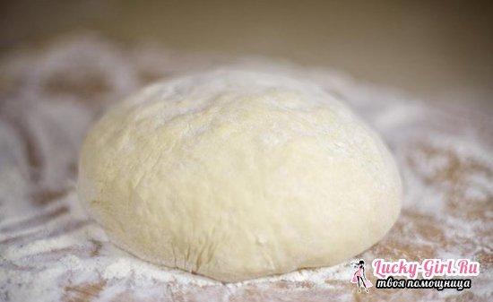 Тесто для пирожков с сухими дрожжами: быстрые и легкие способы приготовленияPPP